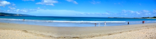 Apollo Bay Pan